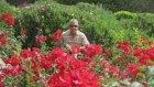 İlhan Şeşen - Ellerimde Çiçekler