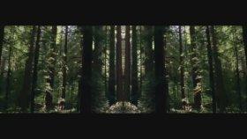 Opeth - Elysian Woes