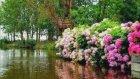Yavuz Başar- O Ağacın Altı