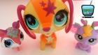Şarkı Söyleyen Miniş Köpek, Özel Peri Miniş Littlest Pet Shop Minişler Oyuncakları