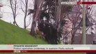 Fransız Polisinin Çimlerle İmtihanı