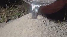 Boş Karınca Yuvasına Eritilmiş Alüminyum Dökülüyor