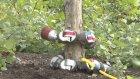 Ağaca Tırmanan Gözcü Yılan Robot