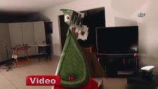 İlginç Dinozor İllüzyonu