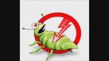 Hamam Böceği Nasıl Öldürülür