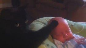 Çok Gizli Bir Yöntemle Bebek Uyutan Kara Kedi