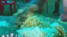 Pirinç Topağını Amansız Gömen Hint