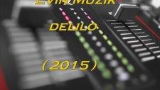 Evin Müzik - Delilo 2015 (Metin Uslu)