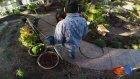 GoPro: Grandma Flies A Drone