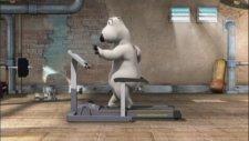 Bernard 001 The Gym