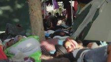 Çapulcuların Dünyası - Gezi Parkı