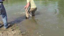 Beyşehir Gölünde Kocaman Sazan Balığı Yakalamak