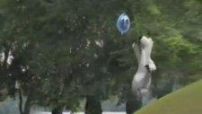 Bernard - Balloon