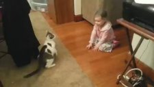 Küçük Kızla Kedinin Yakalamaca Oyunu
