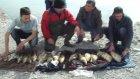 Balık Salımı Sazan Salımı Eyup Reıs 2015