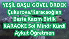 Yeşil Başlı Gövel Ördek Sol Minör Kürdi Karaoke Md Altyapısı Türkü Sözü