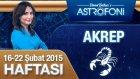 AKREP burcu haftalık yorumu 16-22 Şubat 2015