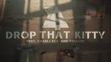 Ty Dolla $ign - Drop That Kitty Feat. Charli Xcx And Tinashe