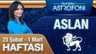 ASLAN burcu haftalık yorumu 23 Şubat 2015-01 Mart 2015