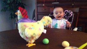 Yumurtlayan Tavuğa Şaşırıpp Kalan Bebek