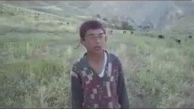Van Stayla - Mc Mustafa