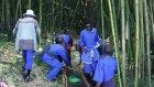 Gazella Turizm - Ruanda Goril Safari'den Görüntüler