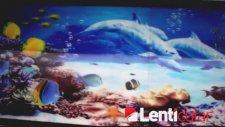 3D Akvaryum Lenticular