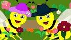 Çiçekler Rondu (1) - Çizge TV - Çizgi Film - Okul Öncesi - Ana Okulu - Çocuk Şarkıları