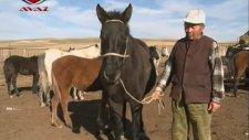 Kırgızistan Tanıtım Belgeseli
