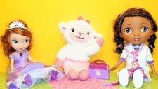 Prenses Birinci Sofia ve Doktor McStuffins - Piknik'te - EvcilikTV