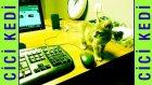 Cici Kedi ile aşk :)))