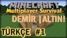 Türkçe Minecraft Survival Multiplayer | Demir Ve Altın Bolluğu | Bölüm 1