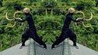 Ninjalar Boş Zamanlarını Nasıl Geçirirler?