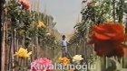Ferdi Tayfur - Koparma Gülleri - Şöhretler Yağmuru (Video Klip)