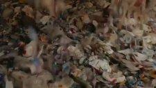 Atık Plastikten Jean Yapmak - Levi's Reklamı