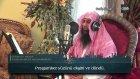 Sohaib Meer Muhammadi  - Abese Sûresi ve Meali  720p