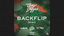 Casey Veggies - Backflip ft. Wiz Khalifa, A$AP Ferg, Iamsu! (Remix)