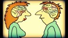 Kadın Ve Erkek Arasında Ki 20 Bilimsel Fark