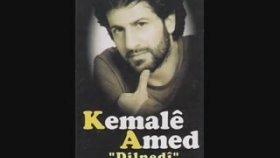 Kemale Amed - Rojek