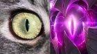 Rengar ve Vel'Koz Aynı Kişi mi? - Komplo Teorisi - League of Legends