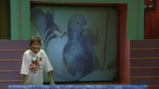 Görevimiz Tehlike Yarışma Programı (1997)