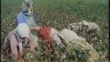 Nostaljik Türkiye Belgeseli 2 - Renkli Video (1967)