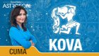 KOVA burcu günlük yorumu bugün 8 Mayıs 2015