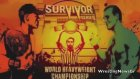 WWE Survivor Series 2013 Match Card