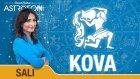KOVA burcu günlük yorumu bugün 12 Mayıs 2015