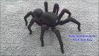 3D Yazıcıyla Yapılmış Örümcek Robot-T8