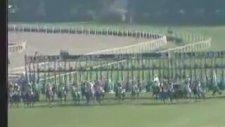 1996 Gazi Koşusu - Bold Pilot