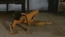 Bruce Lee vs Kareem Abdul Jabbar