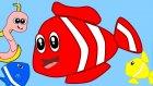 Kırmızı Balık – Çocuk Şarkısı – Çizge TV