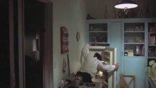 Filmlerde Kedili Sahneler (Sevimlilik İçerir)